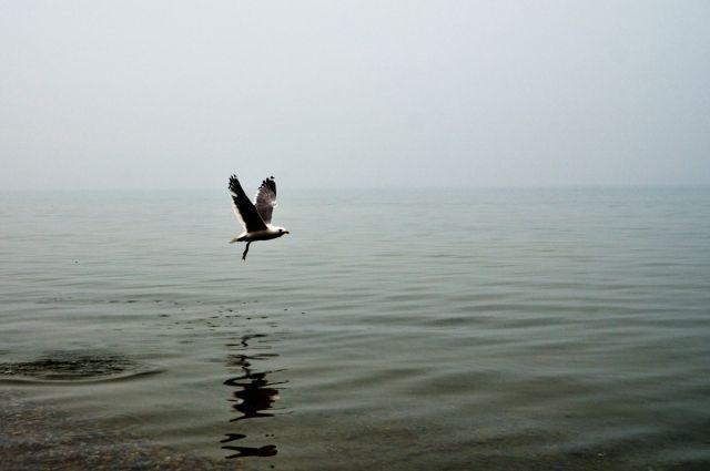 Расширение водоохраной зоны Байкала до140км признано легитимным