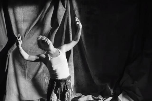 Украинка стала стала режиссером клипа американской певицы Pink