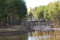 В Сургуте в очередной раз обсудили судьбу северо-восточной части парка «За Саймой».