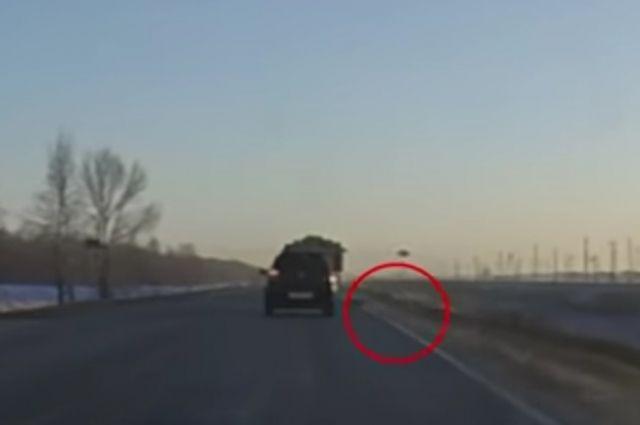 На трассе Гай-Орск выпавшее из грузовика бревно едва не привело к ДТП.