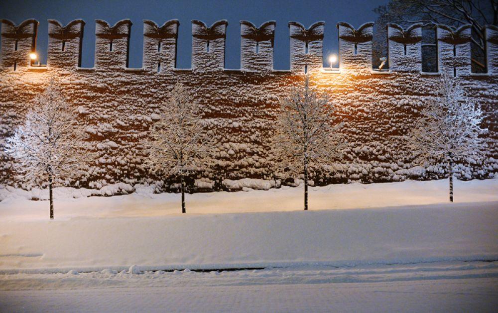 Деревья у стен Московского Кремля во время снегопада.