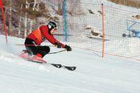 На Игры в Южную Корею приглашение получили четыре атлета, выступающие за Пермский край.