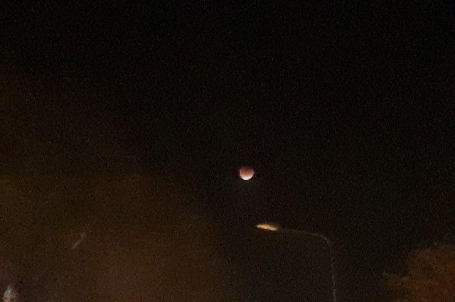 «Что происходит с Луной?»: тюменцы выложили в сеть фото лунного затмения