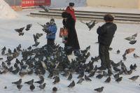 Последний зимний месяц побалует иркутян.