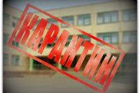 В Киеве из-за роста заболеваемости гриппом закрывают школы