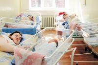 За пять лет в Тюменской области родилось более 40 тройняшек