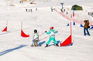 Горные лыжи помогают детям с ограниченными возможностями здоровья