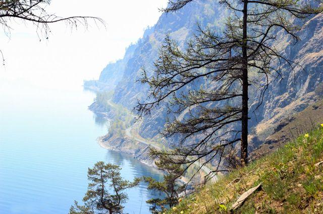 Министерство природы заявило о необходимости выделения средств на ФЦП до 2030 года.