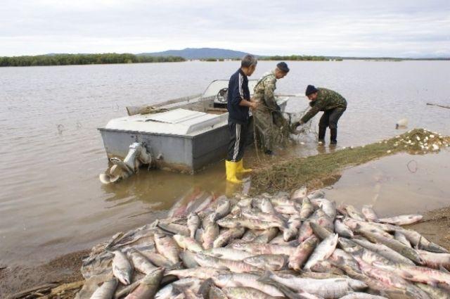 Флот нужен, чтобы развивать рыбоводческую деятельность.