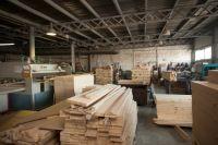 Фабрику столярных изделий обвинили во вредных выбросах.