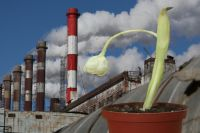 Евросоюз призвал Украину принять закон об экологической стратегии