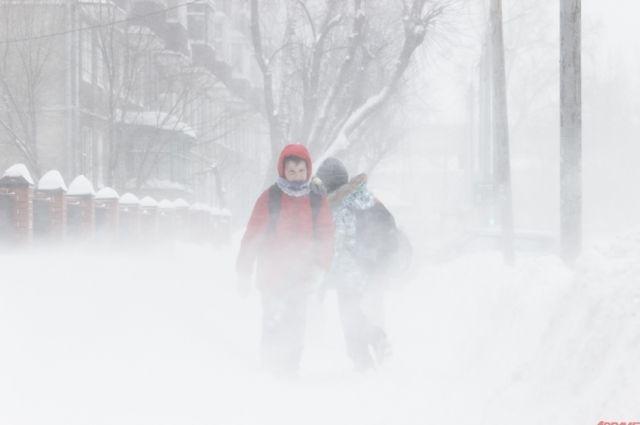 Кузбассовцев предупреждают о метелях и снегопадах.