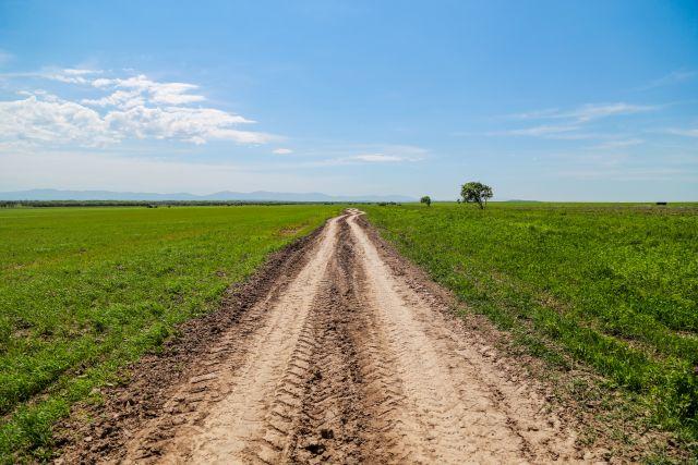 Как распашут бесплатный гектар, многие его обладатели ещё не знают.