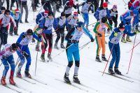 В Оренбурге переносится «Лыжня России» из-за малоснежной зимы.