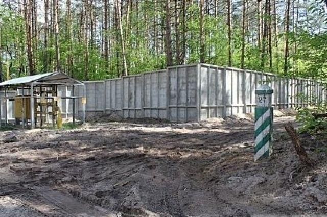 Нелегально присвоенный лес: суд вернул государству участок под Киевом