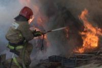 На место происшествия приехали 12 пожарных.
