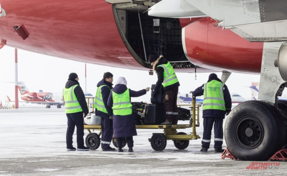 Сданный пассажирами багаж грузят в самолет.