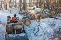 Во время заготовки дров на трехлетнего малыша упало дерево.