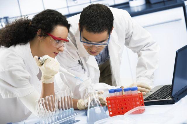 Ученые отыскали эффективное лекарство против рака без побочных эффектов