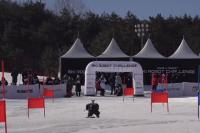 В Южной Корее прошел горнолыжный турнир роботов