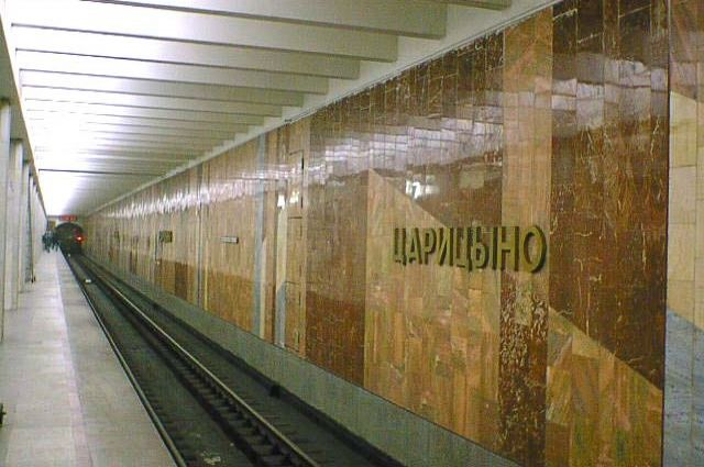 Настанции «Царицыно» московского метрополитена пассажирка упала нарельсы