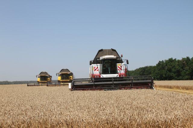 Сегодня уже мало получать большие и качественные урожаи, необходимо снижать себестоимость продукции.
