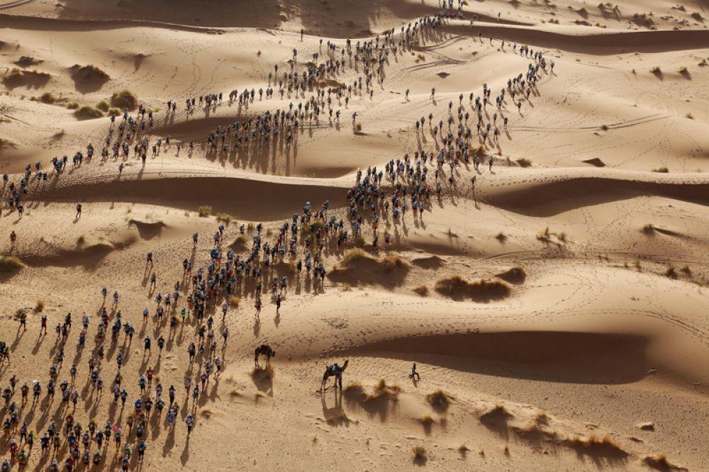 Бегуны «Марафона песков» в пустыне Сахара, Марокко.