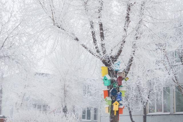 Прибивать что-то к деревьям, находящимся в зелёной зоне будет нельзя.