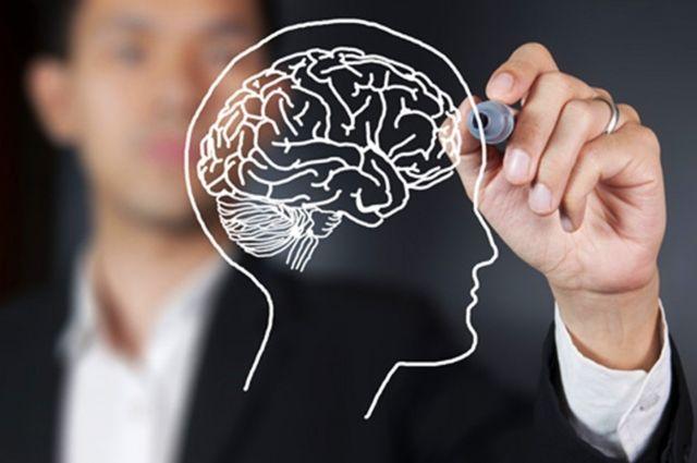 Ученые определили полезные и вредные продукты для нашего мозга