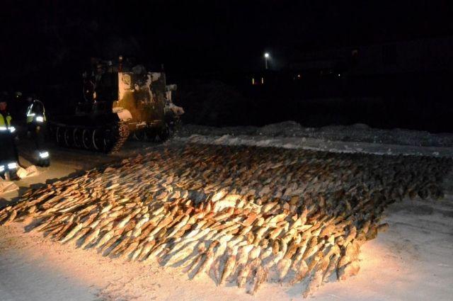 Более двух тысяч рыбин оказалось в мешках.
