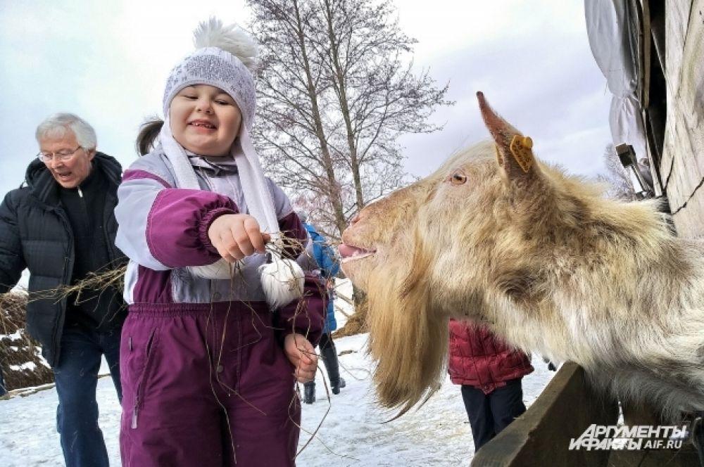 Контактный зоопарк - главное развлечения для детей.