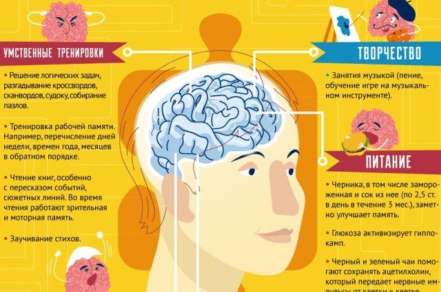 Как улучшить память? Простые способы в инфографике