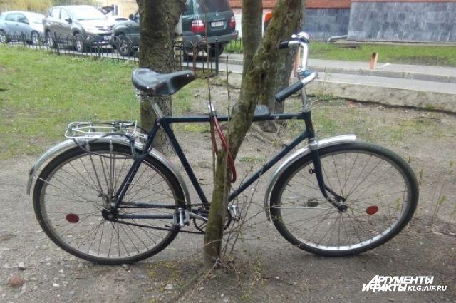 В Калининграде ищут водителя, сбившего пенсионера-велосипедиста.