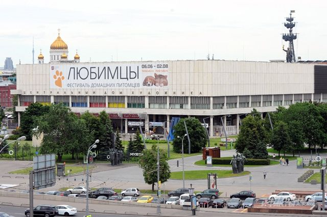 ЦДХ объединят с Новой Третьяковкой