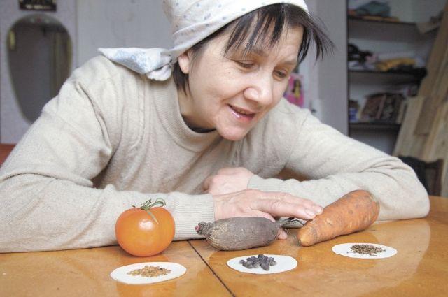 Семена с прошлых лет или сомнительного происхождения нужно обязательно проверять на всхожесть и высевать с учётом этой проверки.