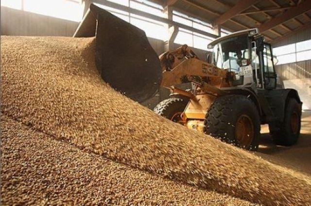 Зерно перевозят по льготным тарифам.