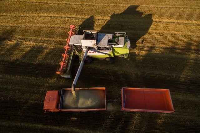 Россия может договориться о поставках зерна в Таиланд