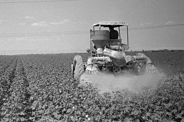 Где только не находила применение советская химическая промышленность - от борьбы с вредителям на полях до производства женских капроновых чулок.
