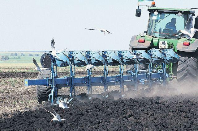 В преддверии посевной аграрии получат субсидии на приобретение семян.