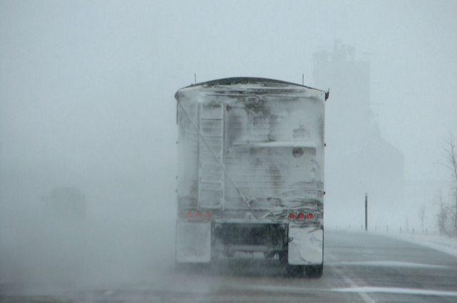 Из Омской области пытались незаконно вывезти 7 тонн корма для животных