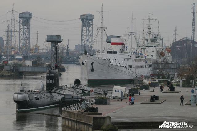 Музей Мирового океана открыл экспозицию об освоении Арктики.