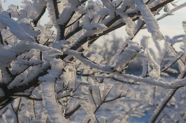 Температура воздуха в ночь на 1 марта опустится до минус 23-25 градусов.