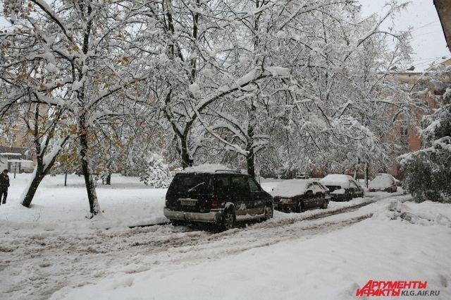Калининградцев просят не парковать авто вдоль тротуаров из-за уборки снега.