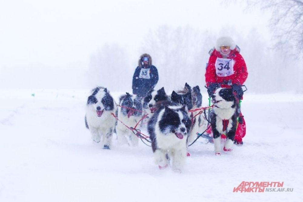 Даже сибирский мороз не остановил любителей быстрой езды.
