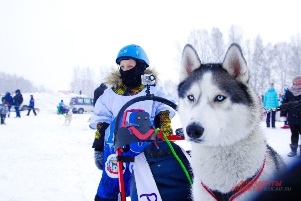 Погода в Сибири переменчива, но трассу все же накатали.