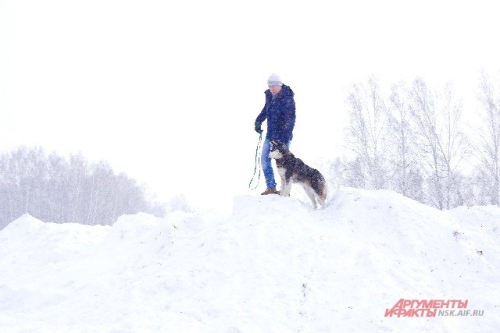 Все-таки, собака - лучший друг человека... Особенно если вокруг снег.