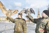 Главная задача этих кремлёвских птичек - отражение атак внешнего врага.