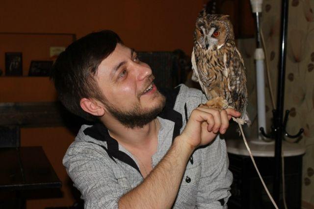 Из всех диких птиц человек чаще всего приручает сов.