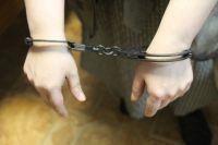 Совершать преступления в Прикамье мужчинам помогала жительница Нытвенского района.