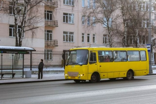 Половина муниципальных автобусов в Тюмени - низкопольные